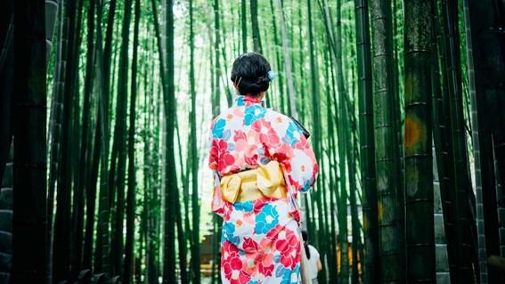 大阪府で着物をレンタルしよう!おすすめスポットとショップ情報